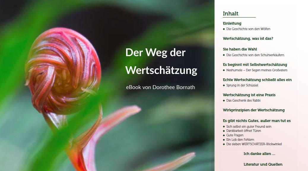 """eBook """"Der Weg der Wertschätzung"""" von Dorothee Bornath"""